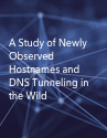 The Impact of Passive DNS Collection on End-user Privacy