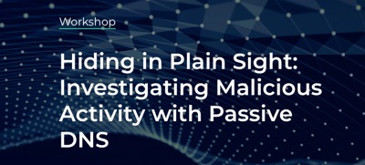 Hiding in Plain Sight: Investigating Malicious Activity with Passive DNS