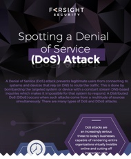Spotting a Denial of Service (DoS) Attack