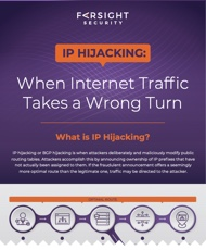 IP Hijacking: When Internet Traffic Takes a Wrong Turn